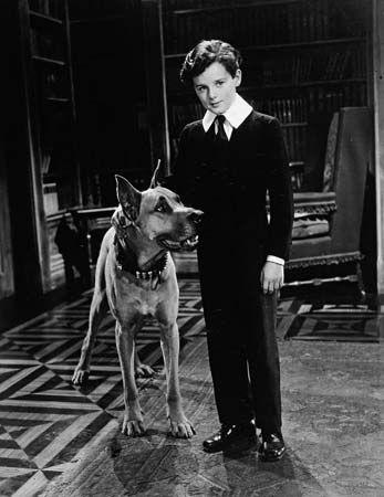 Little Lord Fauntleroy Novel By Burnett Classic Film Stars Freddie Bartholomew Novels