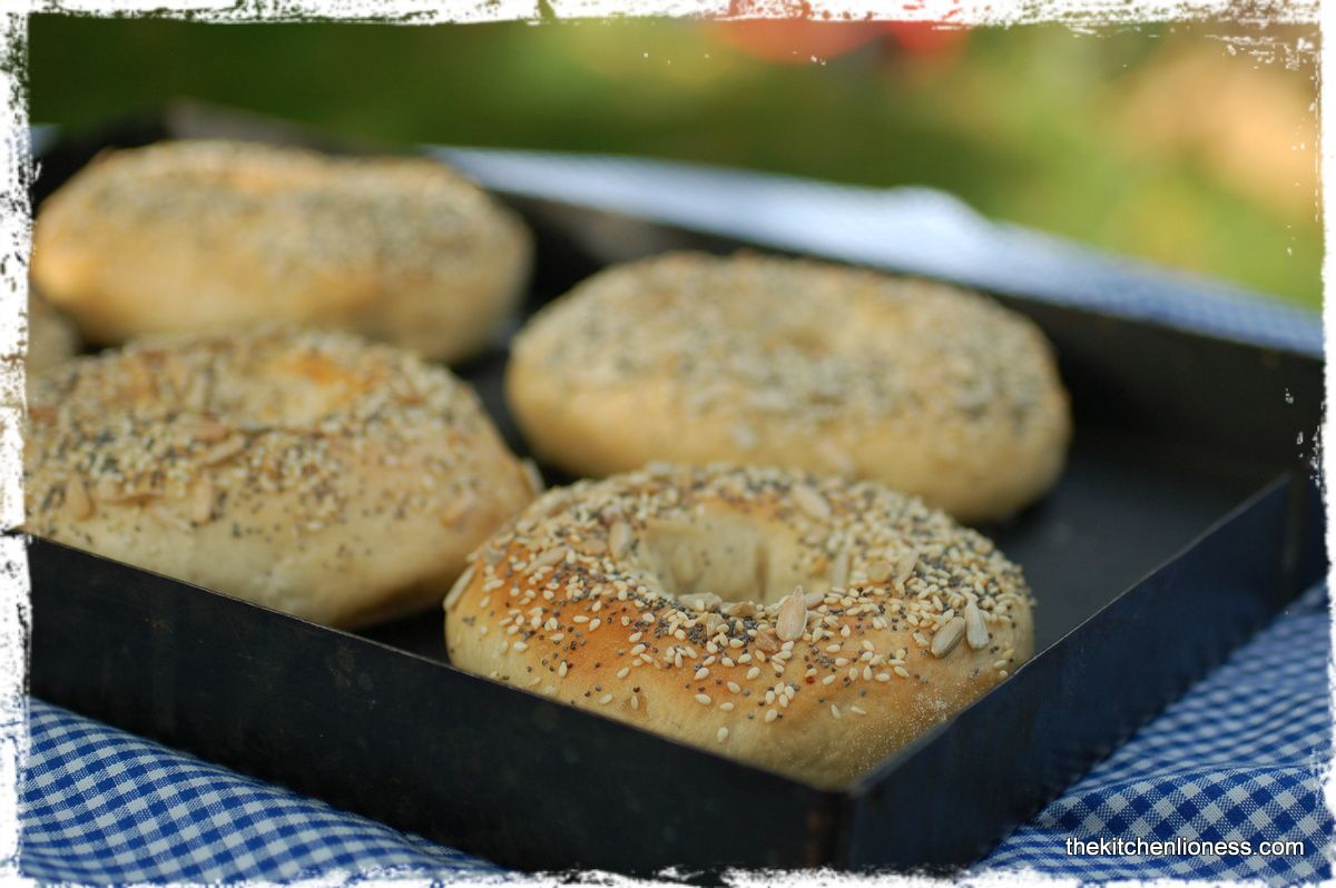 The Kitchen Lioness: Bagels @Andrea Mohr