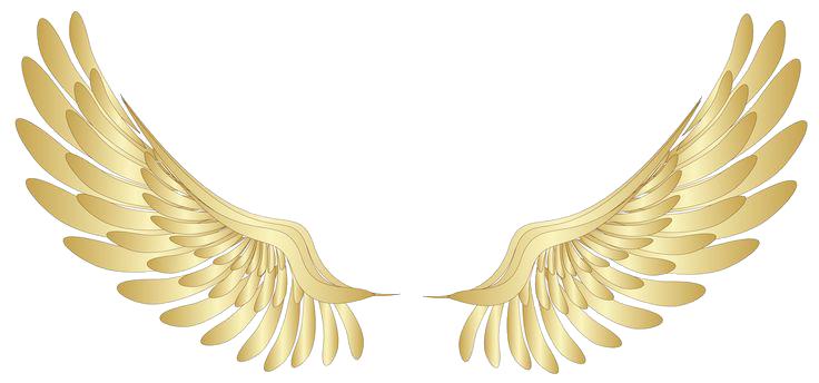 Pin Oleh Alia Mohyazfa Di Angeles Maestros Y Simbolos Celestiales Gambar Sayap Sayap Malaikat Gambar