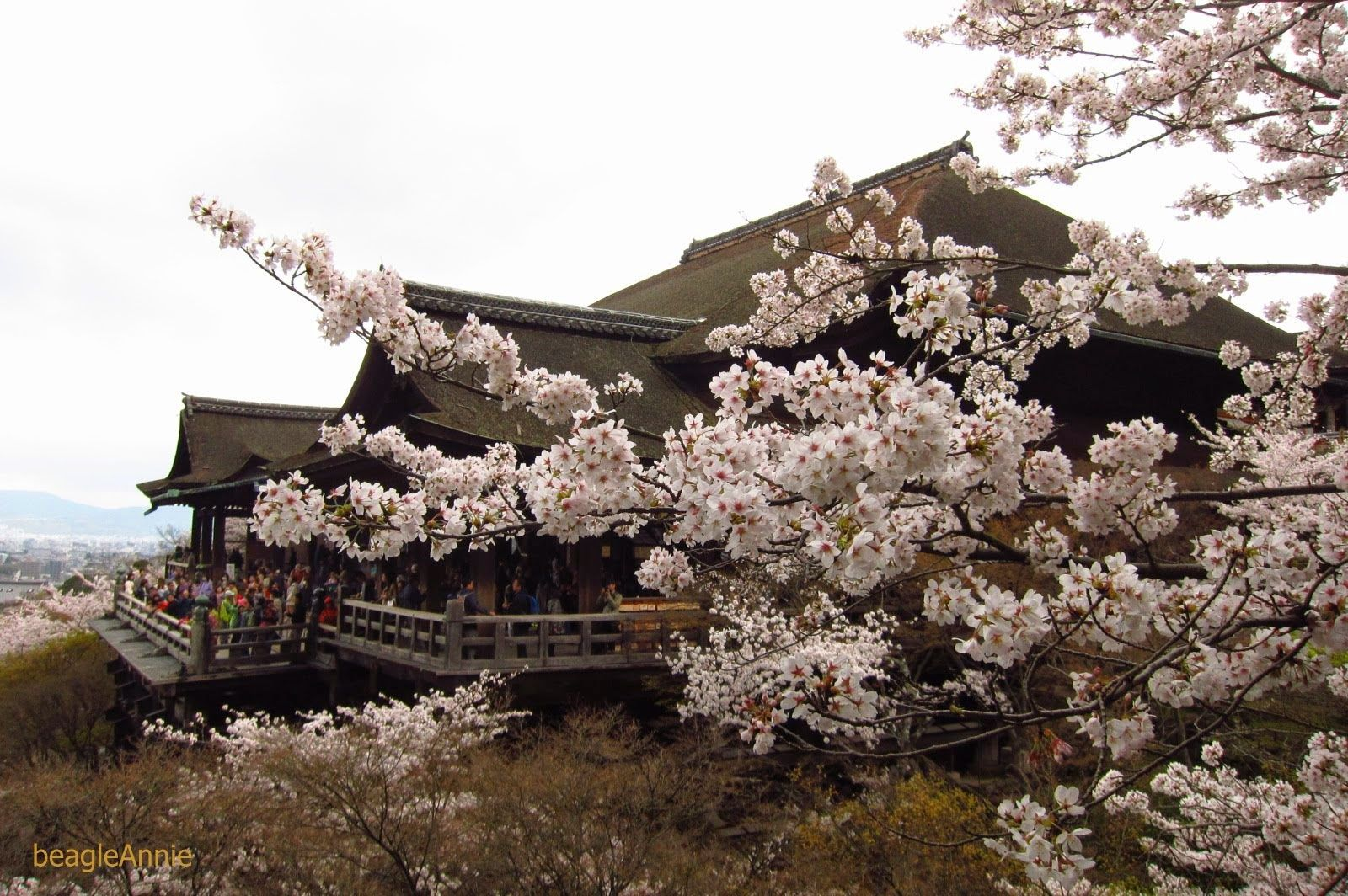 Round of the Seasons in Japan