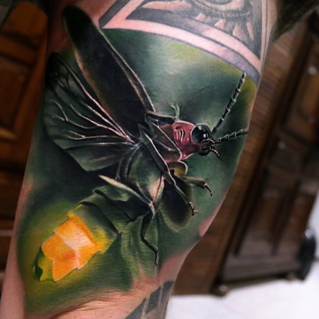Color art magazine - Cool Top 100 Tattoo From Tattoo Art Magazine Beautiful Hybrid Insect Tattoo