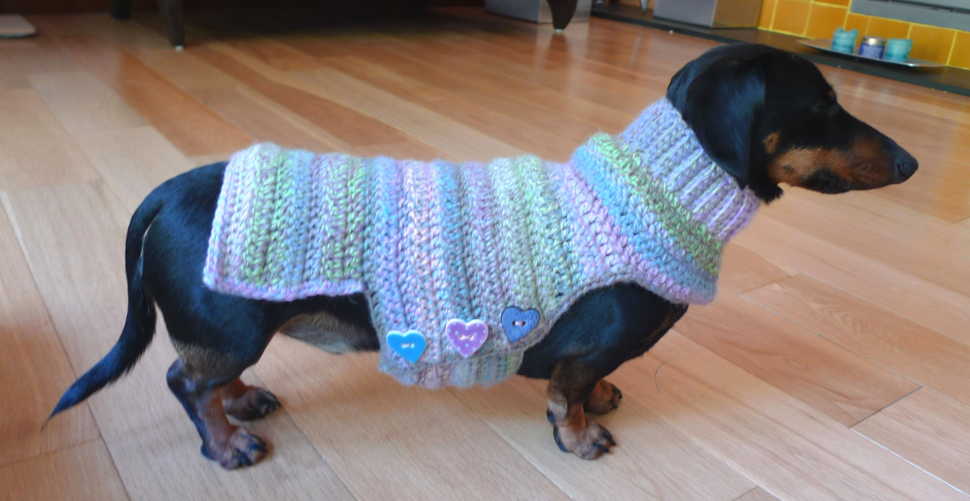 Crochet dog sweater | Dog sweaters | Pinterest | Ropa para perros ...