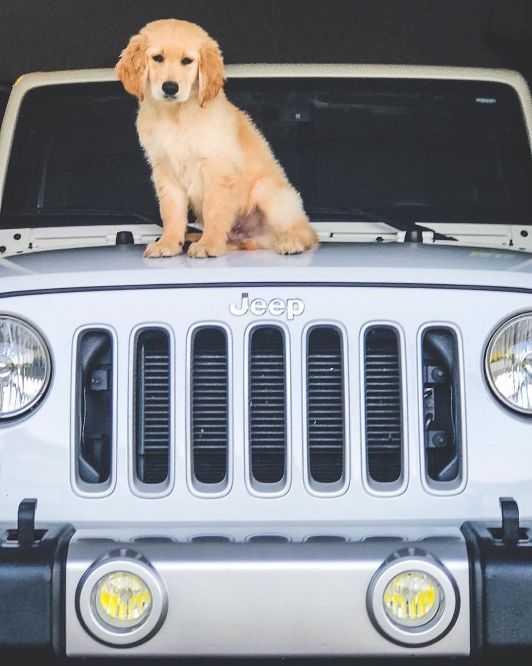 Jeep On Instagram Security System Morgan R Jeep