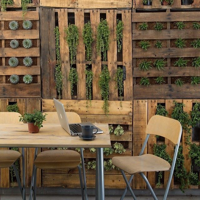 Revista muros, muro de madera y plantas paredes de madera