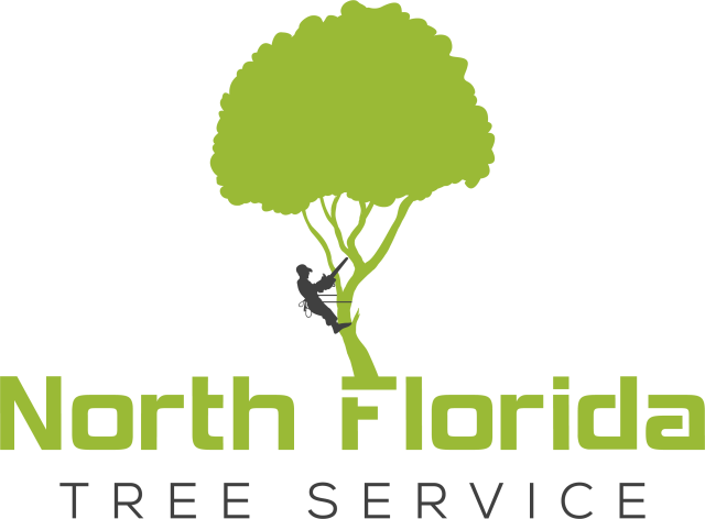 North Florida Tree Service Offers 24 7 Emergency Tree Services In