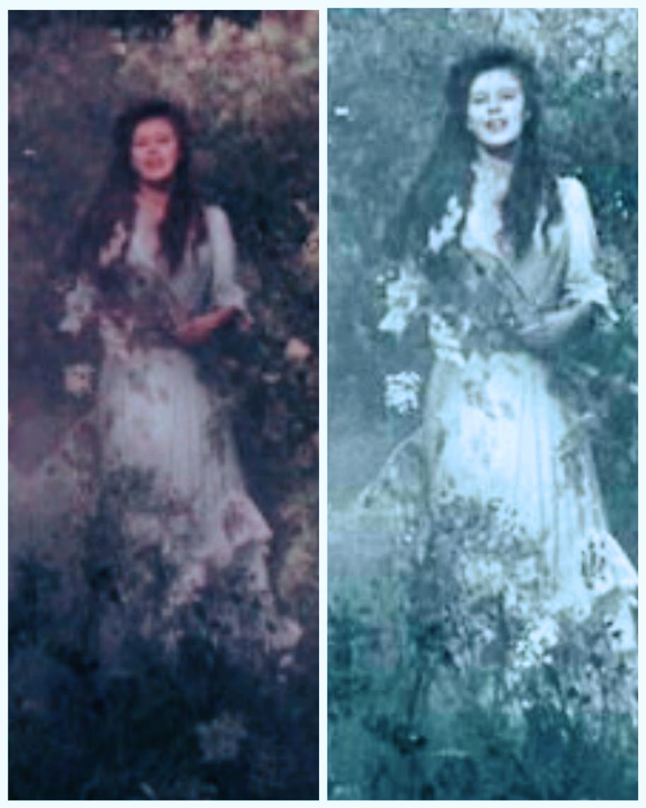 "Lilias Craven (Irene Jacob) in the film ""Secret Garden"