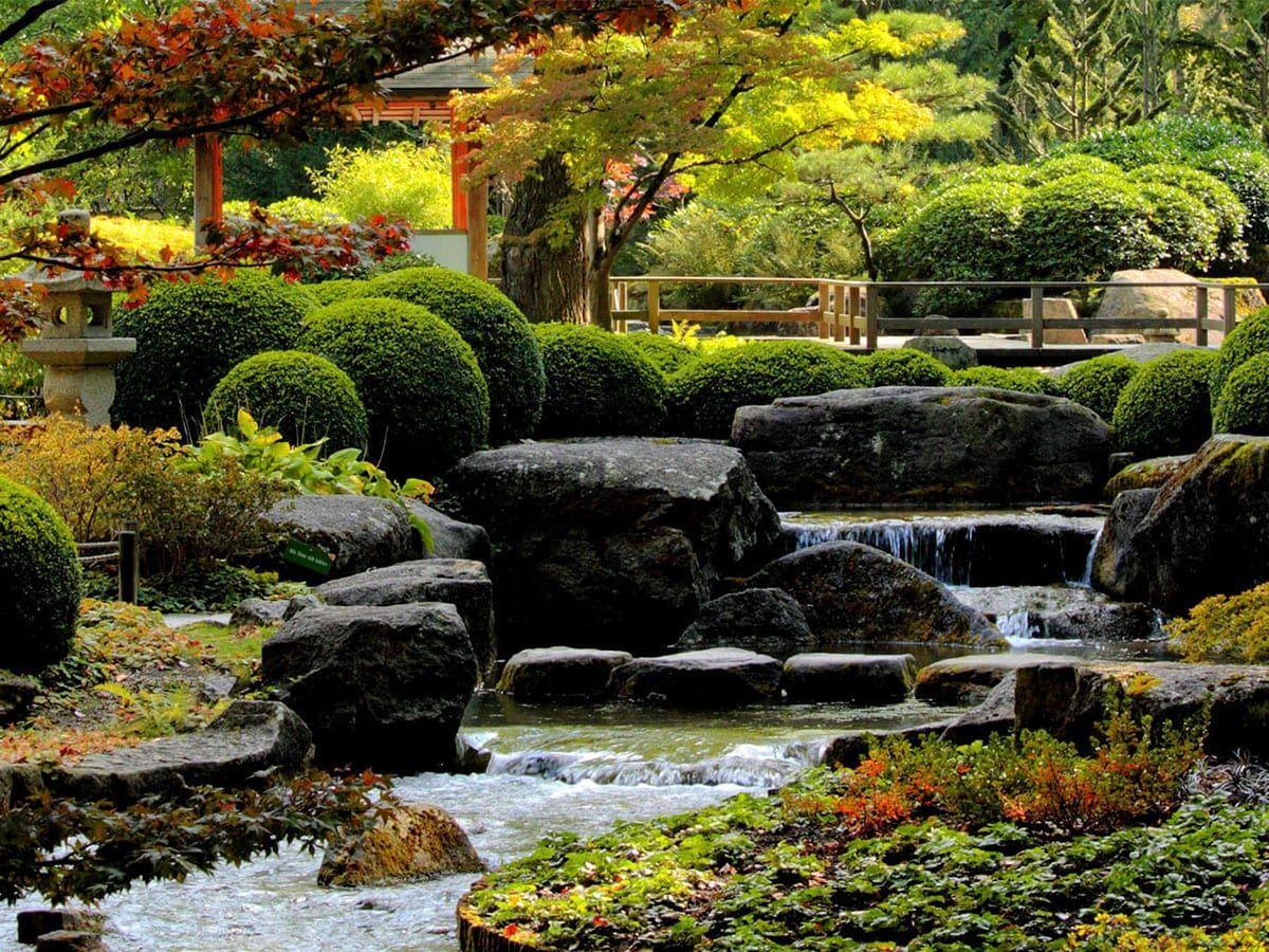 Hier Erfahren Sie Wie Sie Einen Feng Shui Garten Selber Gestalten Anlegen Regeln Farben Pflanzen Beispiele B In 2020 Feng Shui Garten Garten Gestalten Garten
