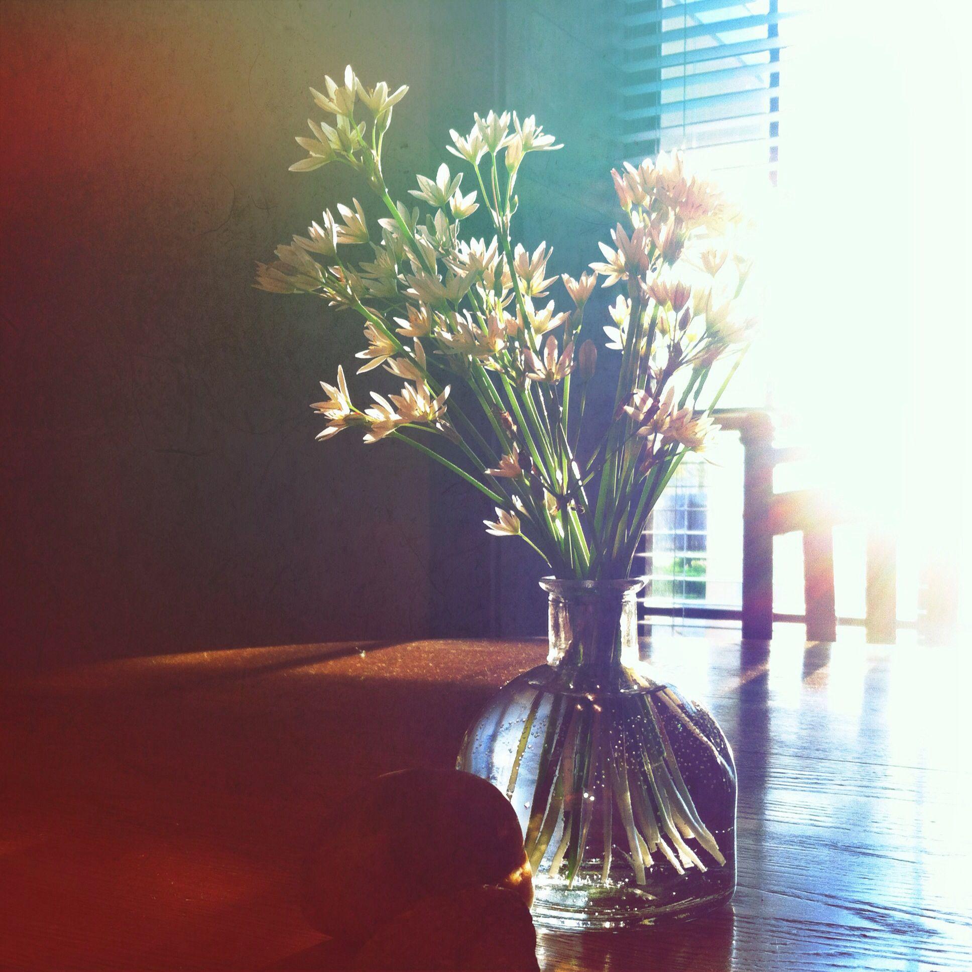Pretty as a picture.