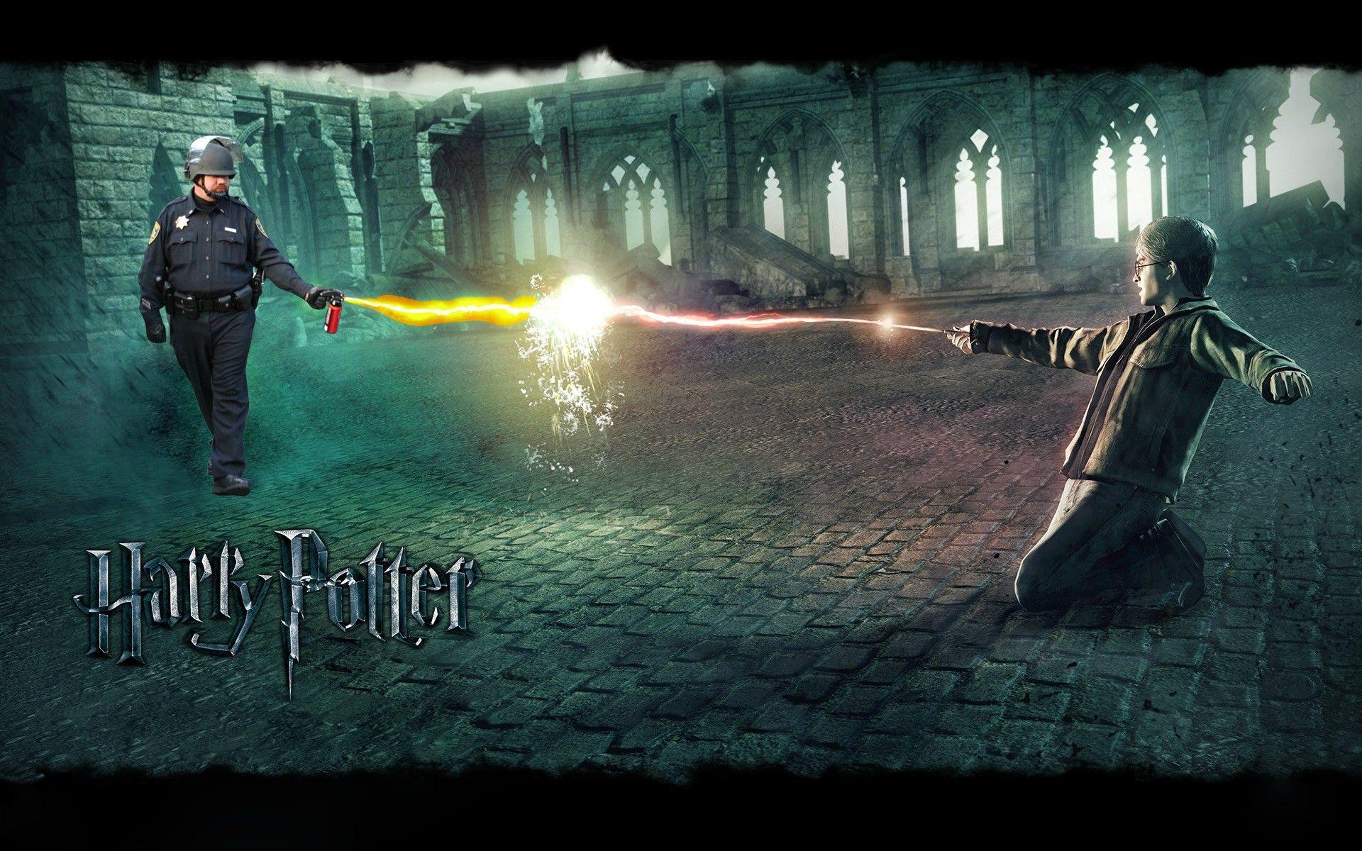 I Love Internet Memes Harry Potter Vs Voldemort Deathly Hallows Wallpaper Deathly Hallows Part 2