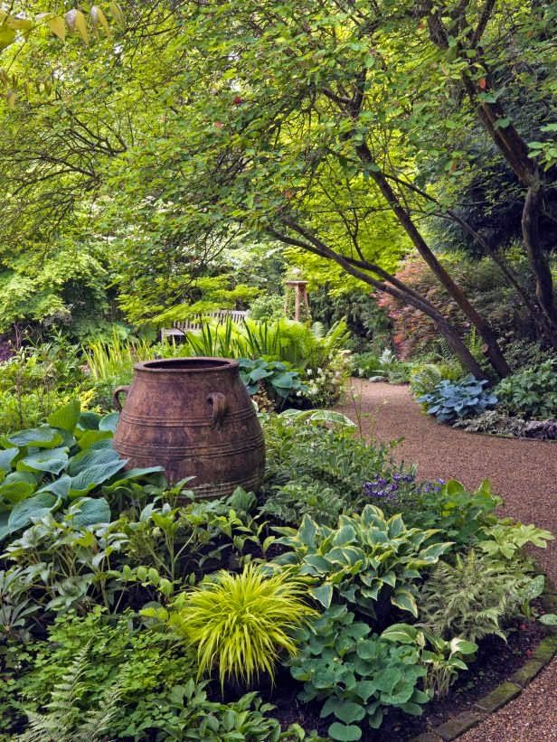 shade garden Stone terraces Pinterest Tree canopy, Canopy and