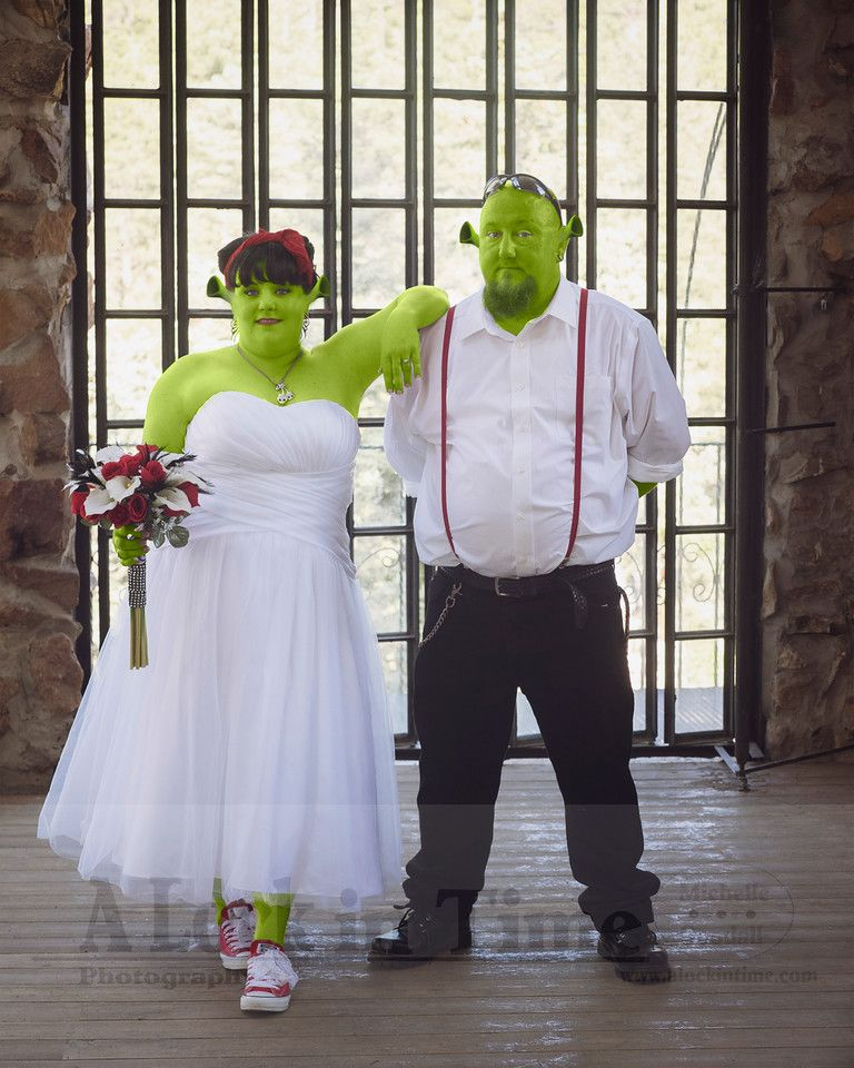 Princess Fiona And Shrek Wedding