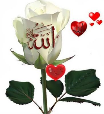 Beautiful Allah Names Wallpapers Beautiful Allah Names Beautiful Allah Names Pics Beautiful Allah Name Allah Names Good Night Flowers Indian Flag Wallpaper