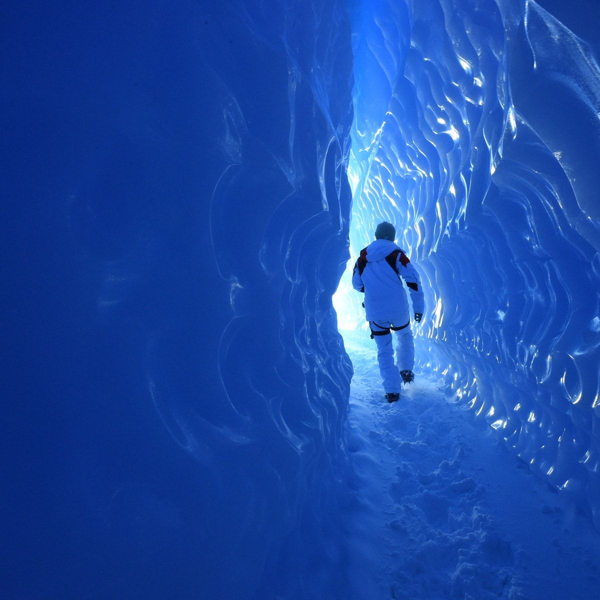 How to Visit Antarctica for a Day Antarctica, Day trips