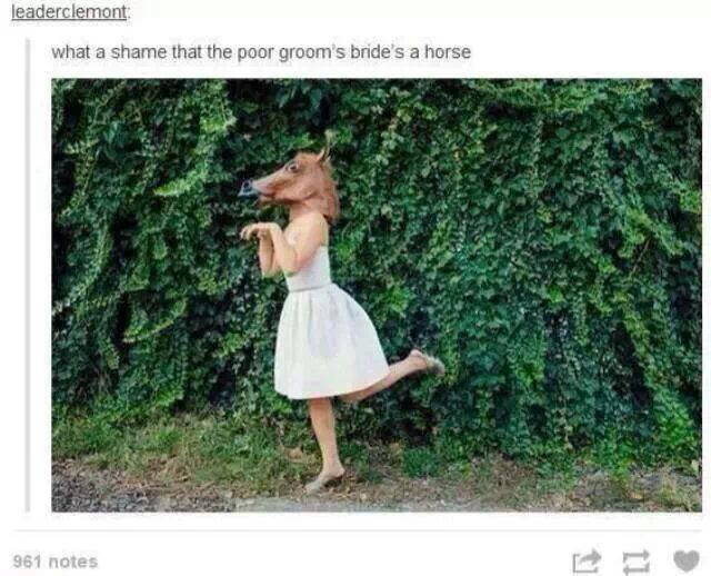 """""""What a shame the poor groom's bride is a horse."""""""