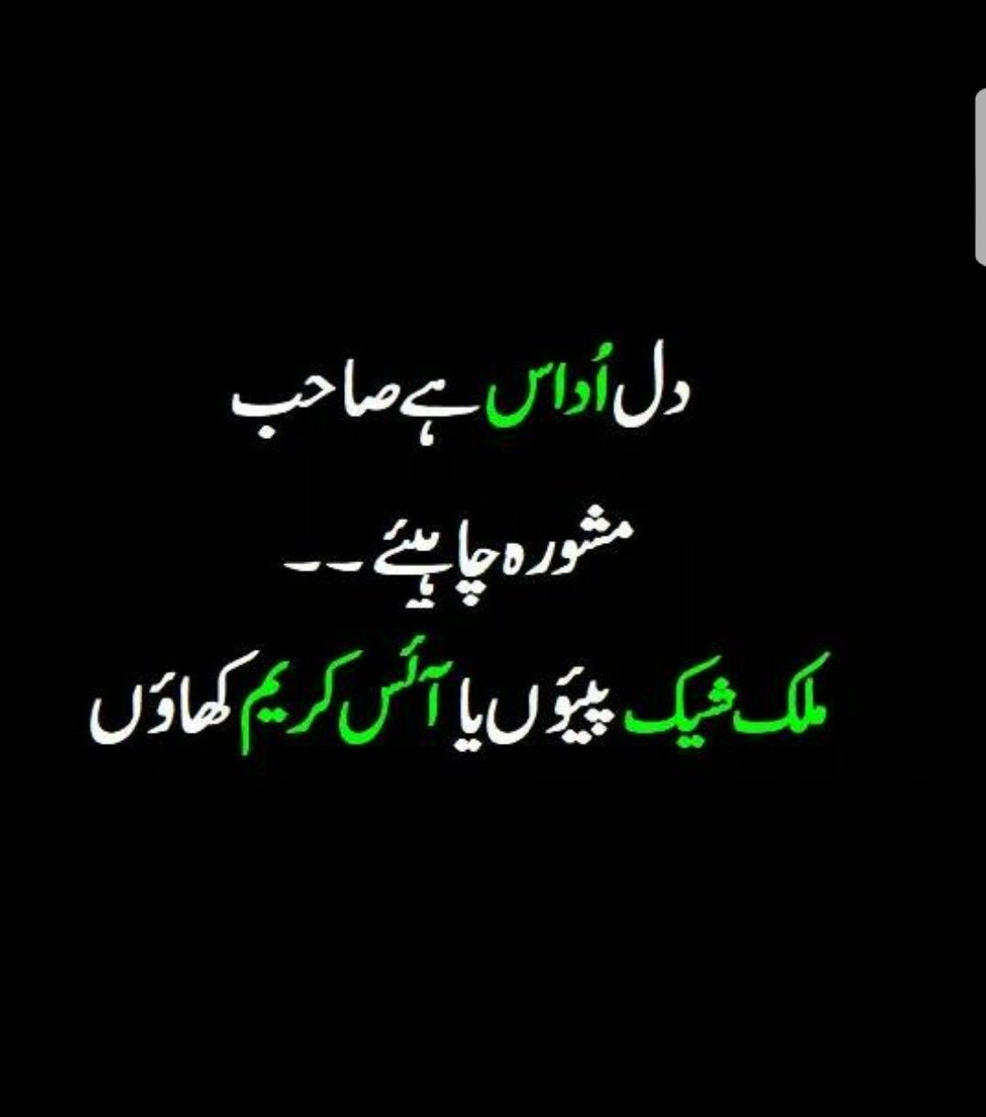 Ice Cream Is Best For Me Ali Ghumman Poetry Funny Funny Quotes In Urdu Funny Words