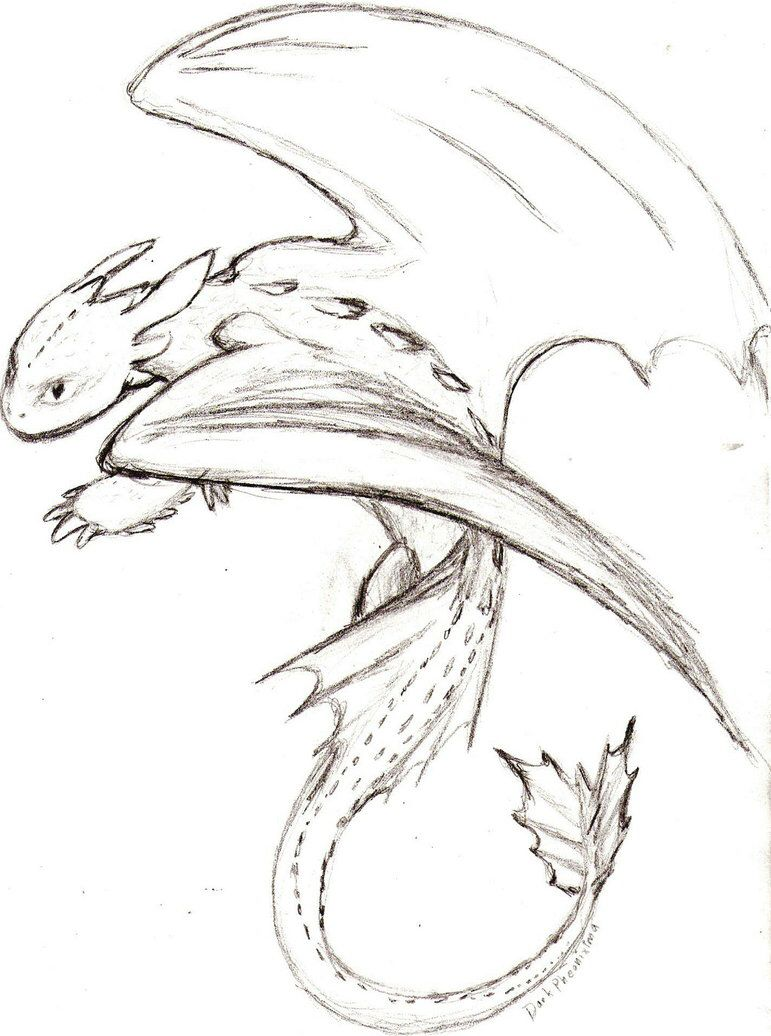 Drawing Night Fury : drawing, night, Orlando, Sketches, Other, Dragon, Sketch,, Train, Dragon,, Drawings