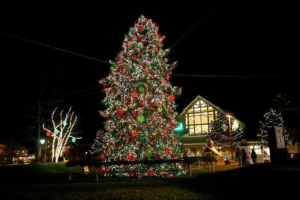 Ll Bean Christmas Trees.L L Bean Northern Lights Freeport Maine Freeport Winter