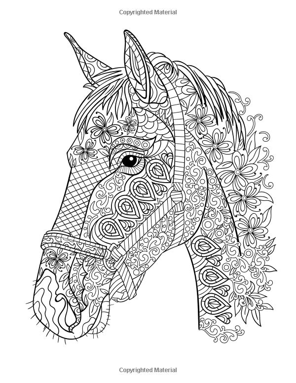 Horse Coloring Book: Coloring Stress Relief Patterns for Adult ...