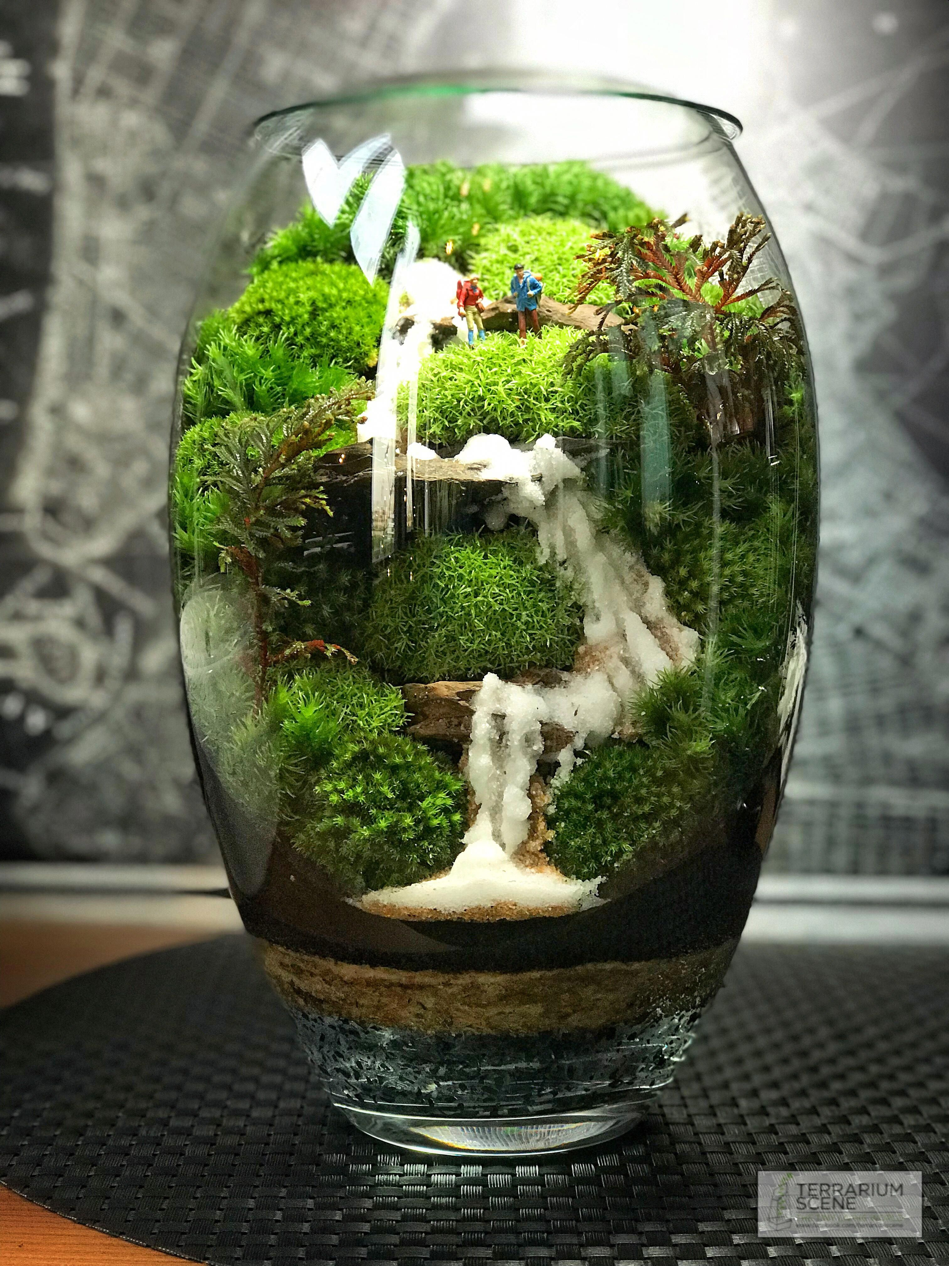terrarium scene with waterfall