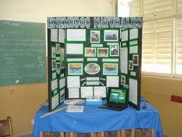 Como elegir el proyecto para la feria de ciencias mamparas ciencia pinterest ciencia - Como hacer una mampara ...
