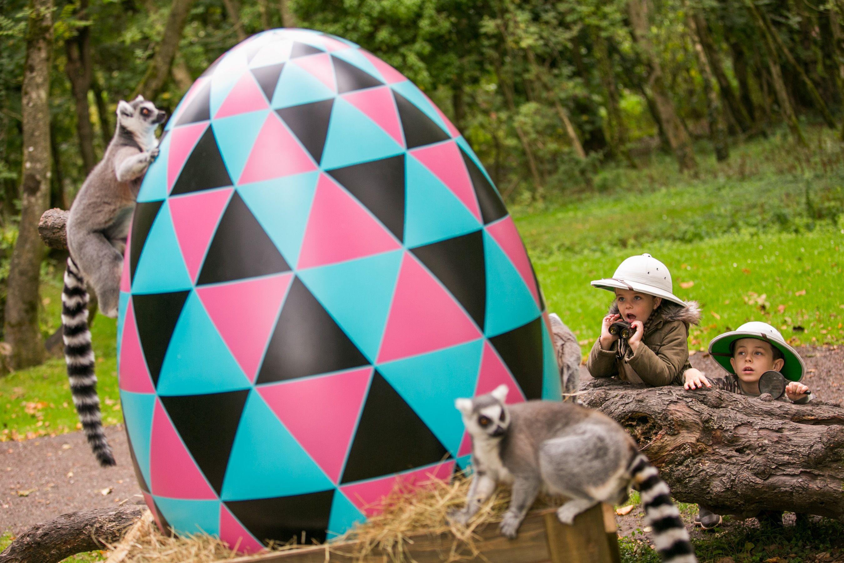 Furby Boom App Eggs   ...