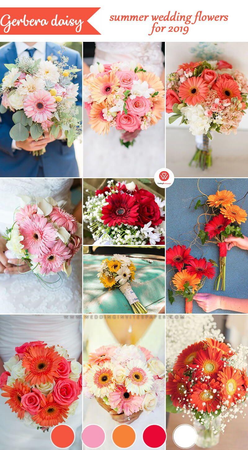 2020 的 16 Stunning Summer Wedding Flowers Gerbera Daisy Wedding