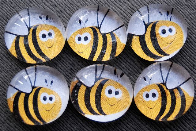 Bzzz Bees - Glass Pebble Magnets