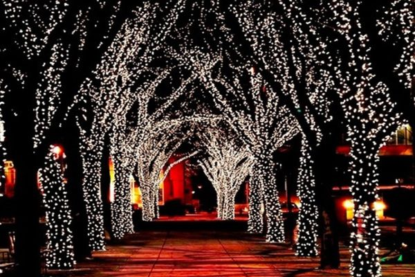 Pin By Katherine Ratcliff On All Things Christmas Solar Fairy Lights Solar Powered Fairy Lights Solar Led Lights