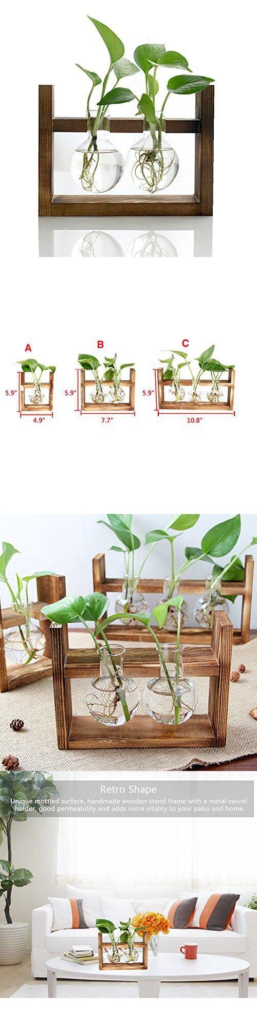 Halova terrarium creative fashion plant terrarium modern