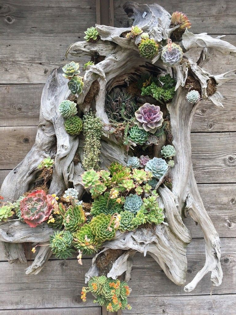 45 Simple Succulent Plants Decor Ideas You Will Love Vertical Garden Diy Succulent Garden Diy Planting Succulents