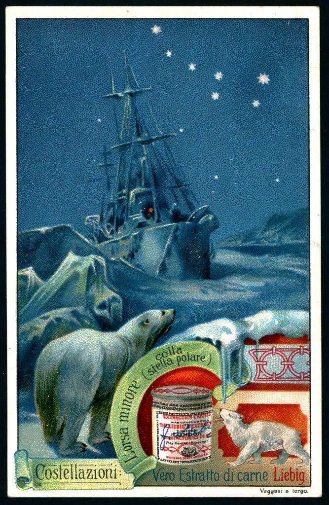 "Liebig's Beef Extract ""Constellations""  Italian issue, 1903. Ursa Minor, the Little Bear & Polaris, the North Star"