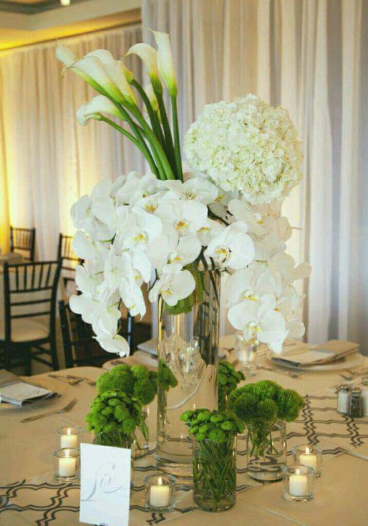 Pin by my anh on calla lily 3 pinterest reception centerpieces calla lily centerpieces white centerpiece wedding centerpieces wedding decor calla lilies image search flowers ideas searching junglespirit Choice Image