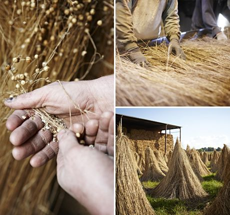 how to make linen from flax