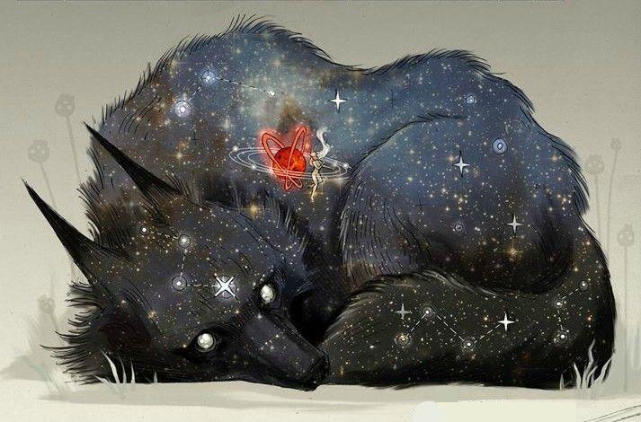 этом иллюстрации звездный волк фото любом