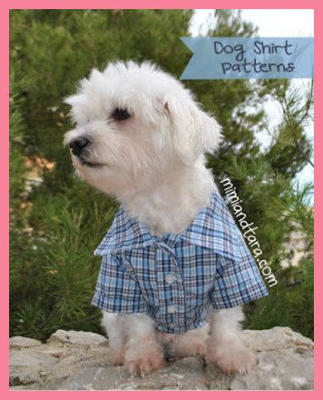 Dog Clothes: A Brief History | Dog Clothes *** You can find out more ...