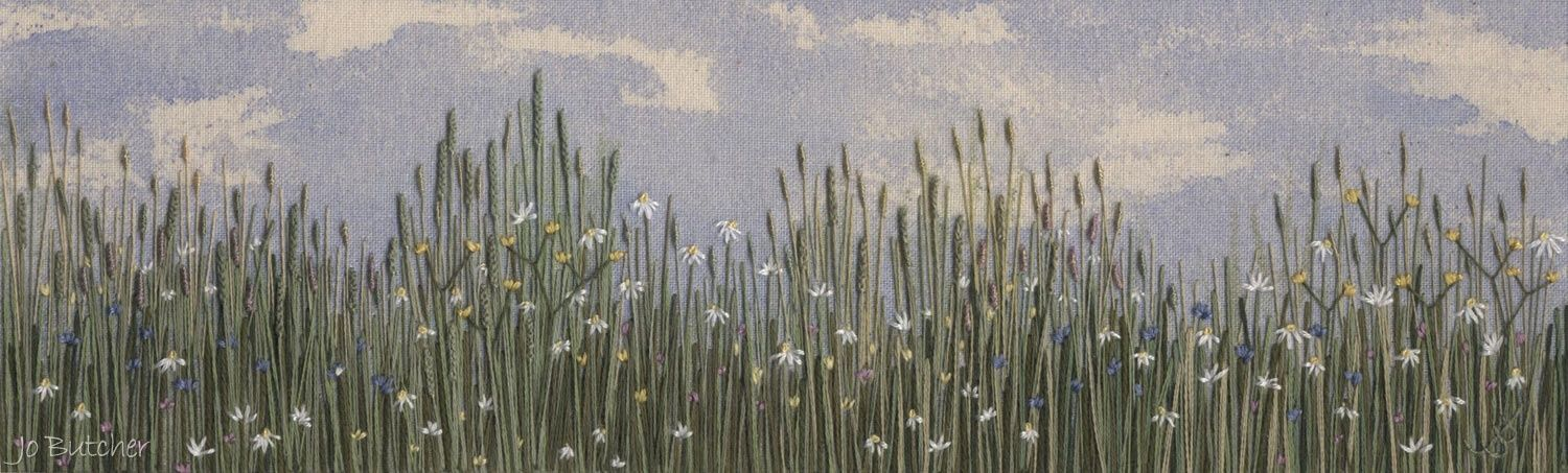 http://jobutcher.co.uk/index.php/gallery-2/meadow