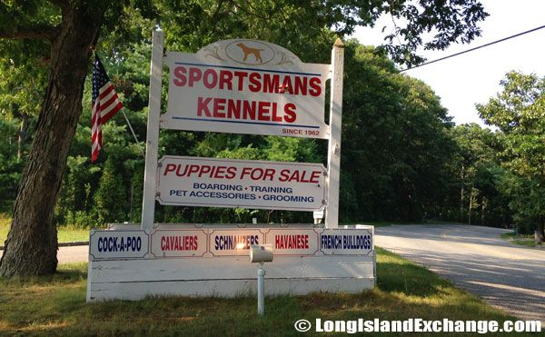 Sportsman Kennels Kennel Havanese Puppies For Sale