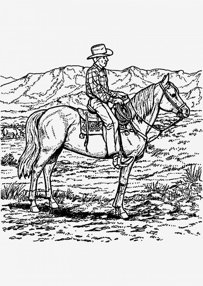 ausmalbilder pferde springreiten  tiffanylovesbooks
