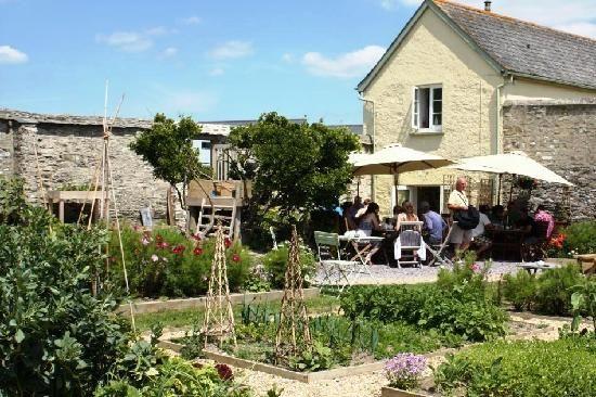 Sandleigh Tea Room & Garden: Tearoom garden and vegetable plots