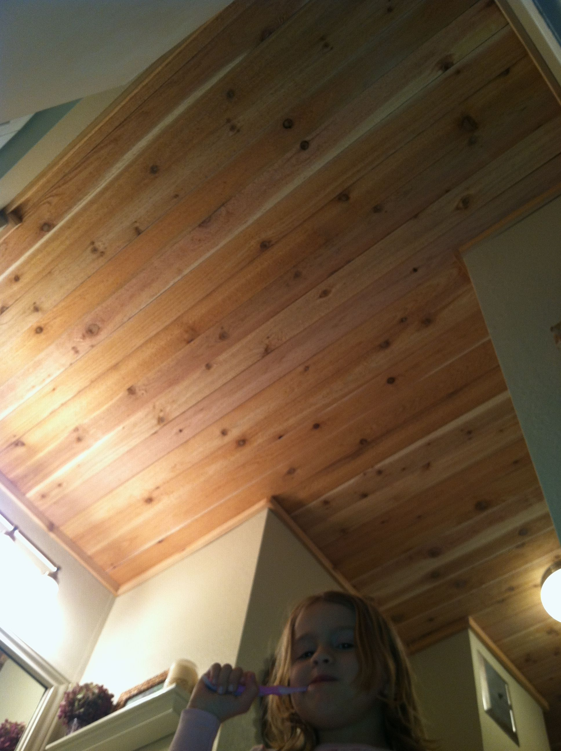 Cedar Plank Bathroom Ceiling And A Cute Face Bathroom Ceiling Kitchen Bathroom Remodel Small Apartment Bathroom
