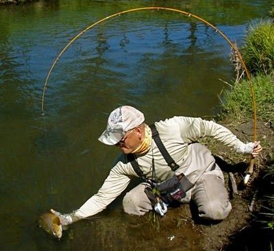 17 best images about fantastic fishing rods on pinterest | pools, Fishing Reels