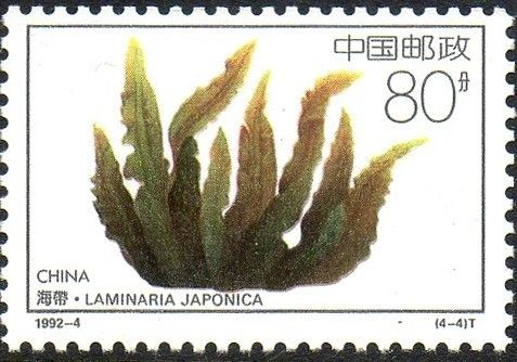 Stamp: Laminaria japonica (China, People's Republic) (Food from Ocean) Mi:CN…