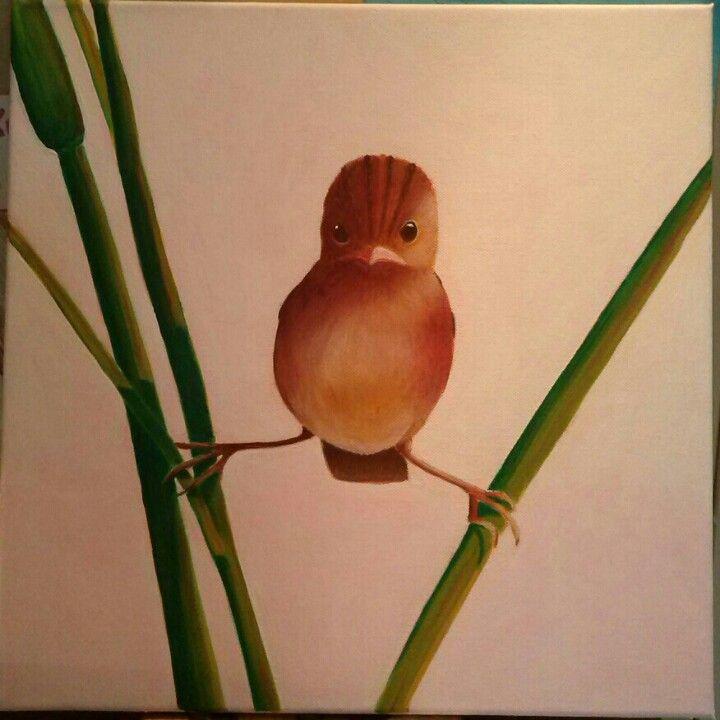 Young bird , Acryl on canvas, 50 x 50 cm. www.sarahcreekart.nl