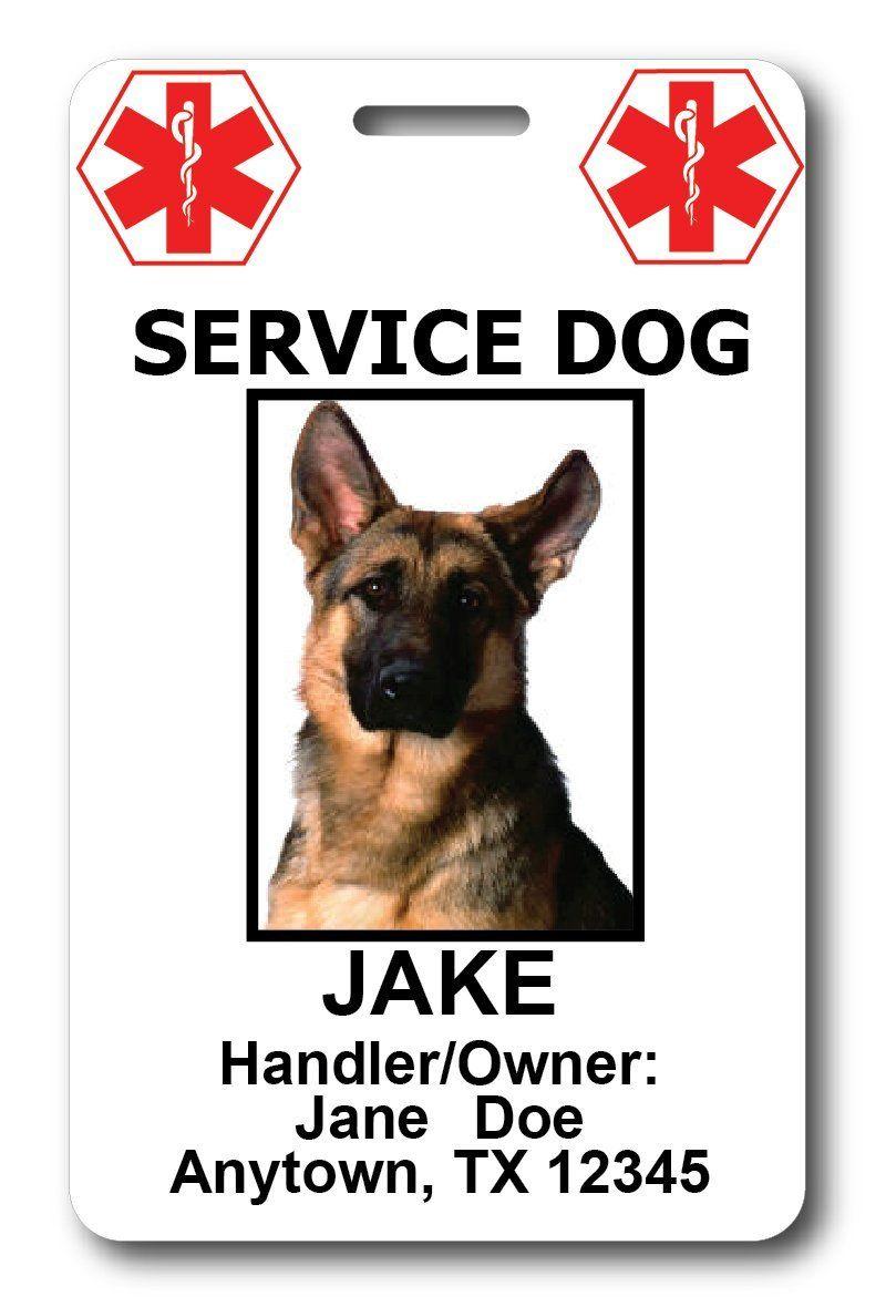 Amazon Com Custom Service Dog Id Cards Health Personal Care