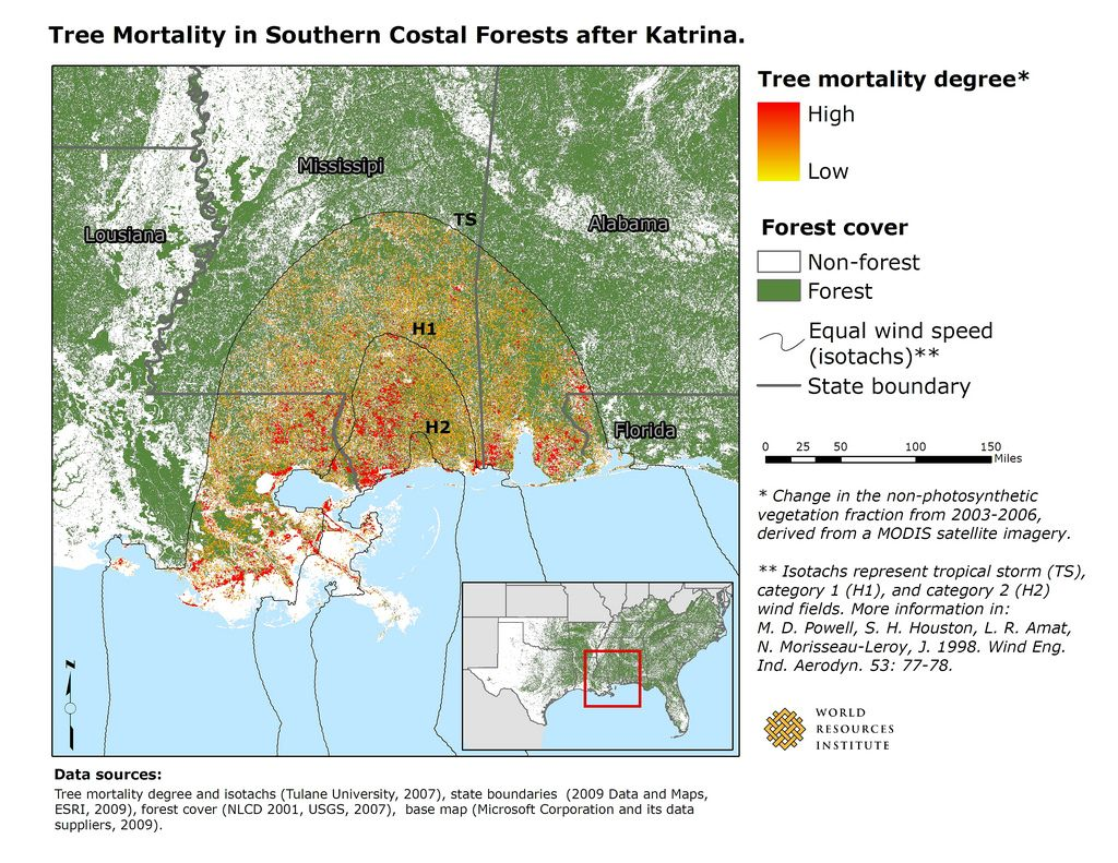 Damage Caused By Hurricane Katrina Concentrated Along The Hurricane S Track In Coastal Areas Along The Gulf Of Mexico An Hurricane History Mortality Imagery