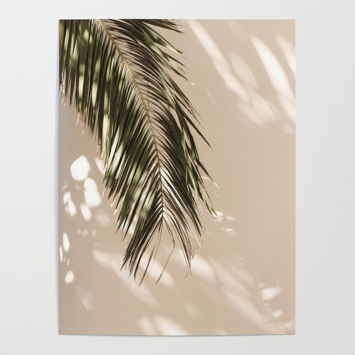 Tropical Palm Leaves Vi Art Poster by Mauikauai -