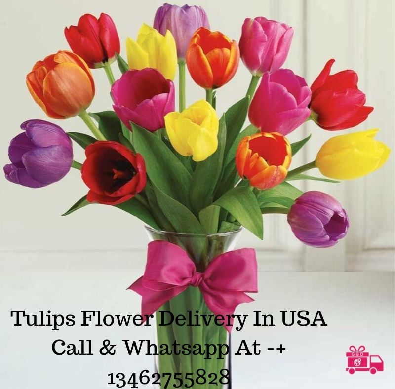 Tulips Flower Delivery In The Usa Flower Delivery Send Flowers Online Flowers Delivered