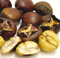 Add this to your food foraging file. Chestnut recipes and tips on cooking them. Modify to suit survival cooking but definitely a food you can add to your stock pile.