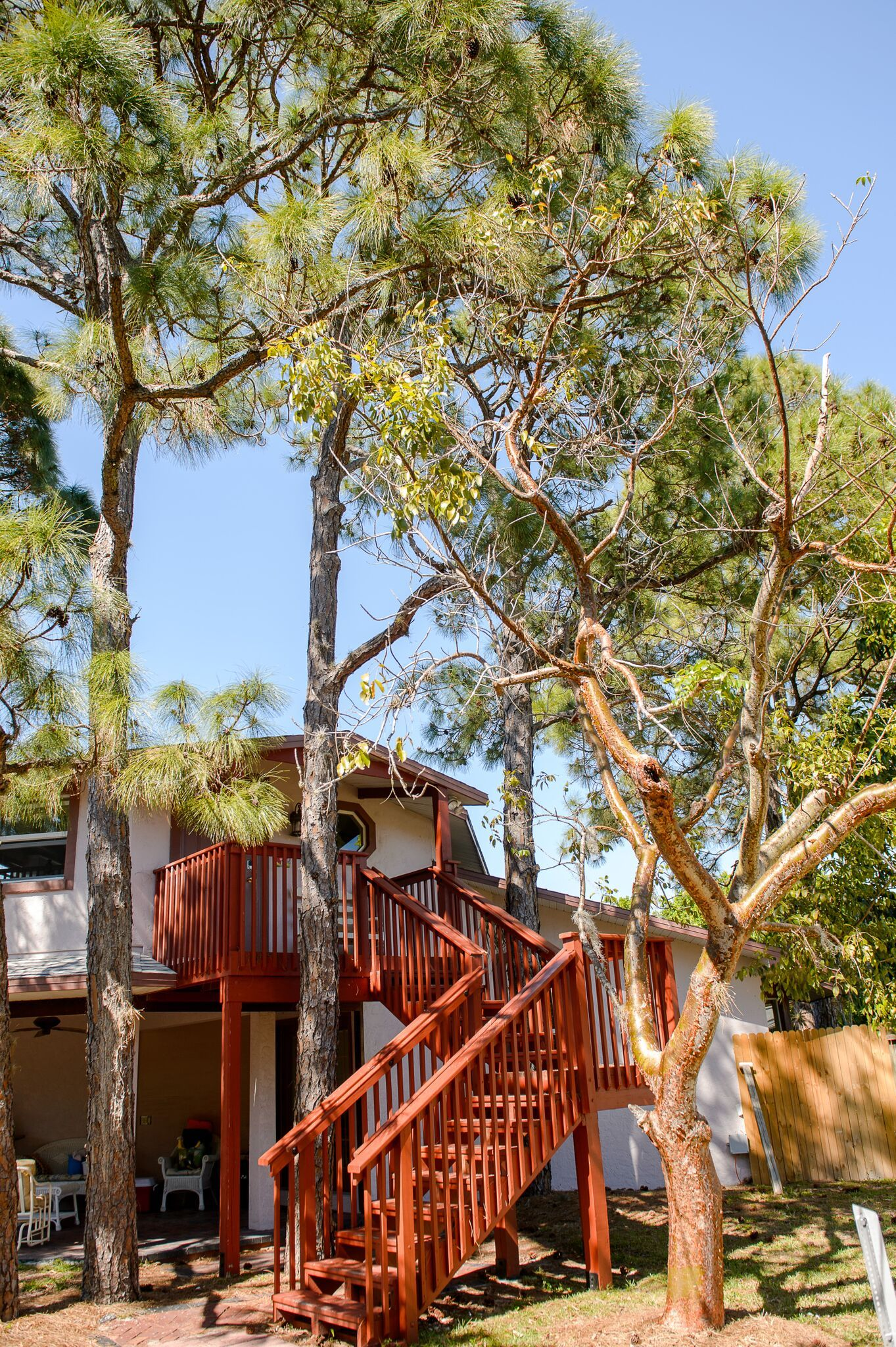 Modern tree house rental for six near the beach in naples