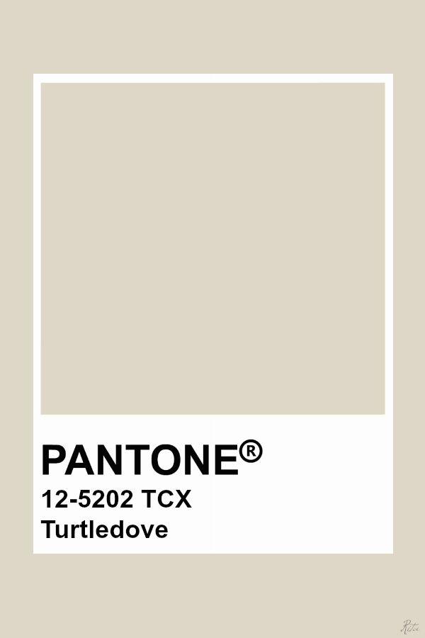 Pantone turtledove tavole colori nel 2019 colori for Tavole colori per pareti